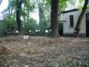 Cimitero 2013