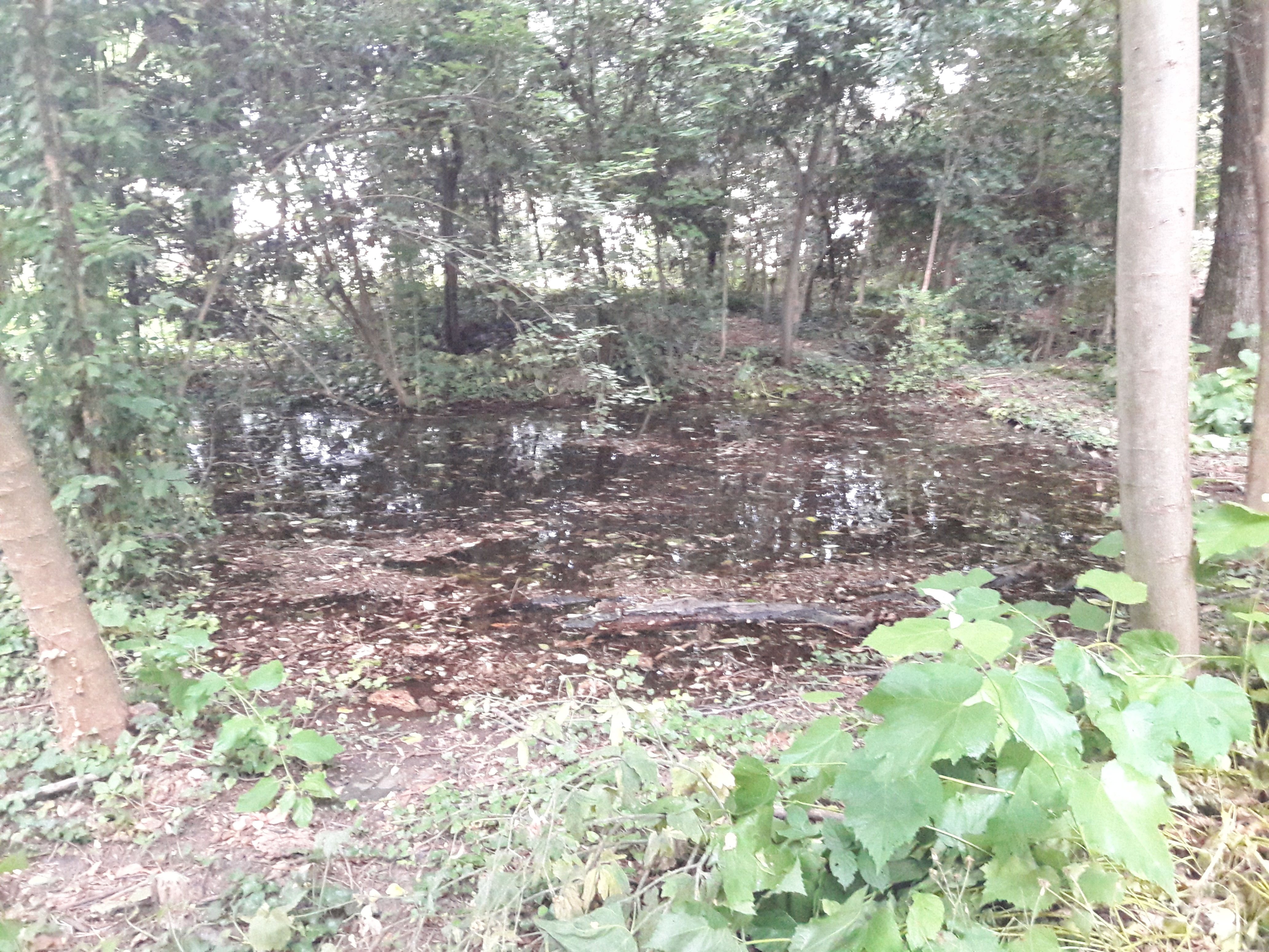Il primo bacino degli Stagni quando è pieno d'acqua