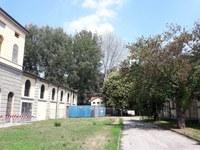 Report dell'incontro con il Comune di Padova sui prossimi interventi sulle alberature dell'ex Macello di Via Cornaro del 23/10/2020