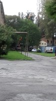 Al via il taglio degli alberi all'ex Macello di Via Cornaro